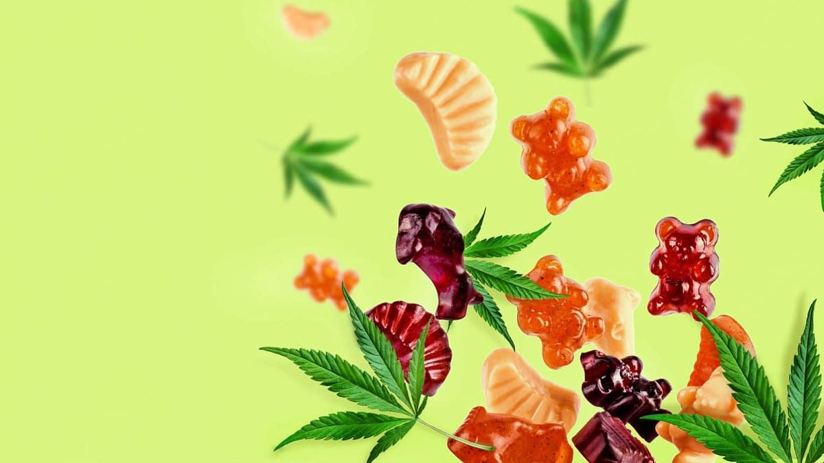cbd gummies derived from hemp