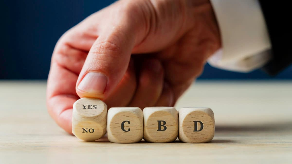 Four pieces of wooden dice forming the word yes or no for CBD