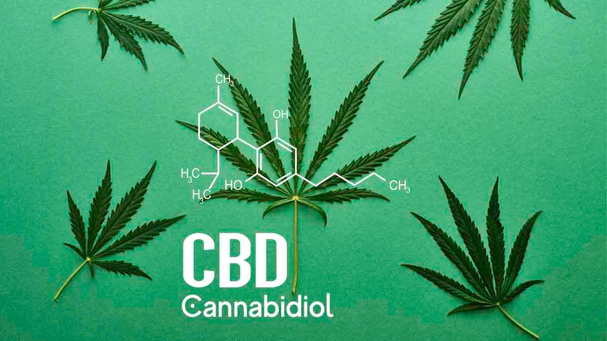 CBD chemistry symbol with hemp leaves in background